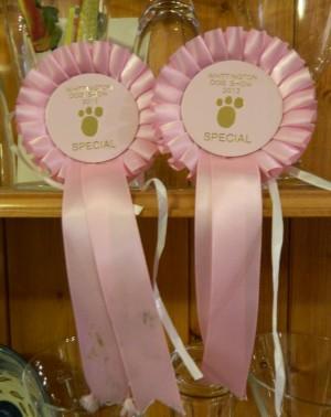 2013 ribbons