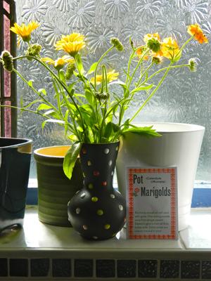marigold_flower